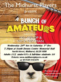 'A Bunch of Amateurs'
