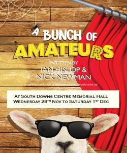 Cast announced for 'A Bunch of Amateurs'